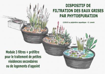 Kit phytoépuration eaux grises